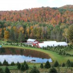 Evergreen Nursery and Christmas Tree Farm
