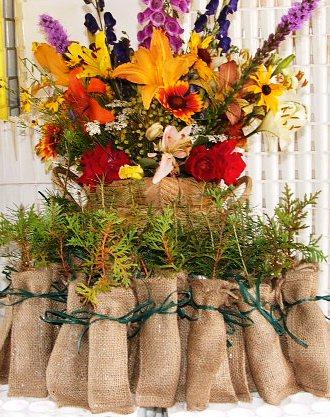 White cedar redrock farm white cedar seedling favors with a flower arrangement mightylinksfo Gallery