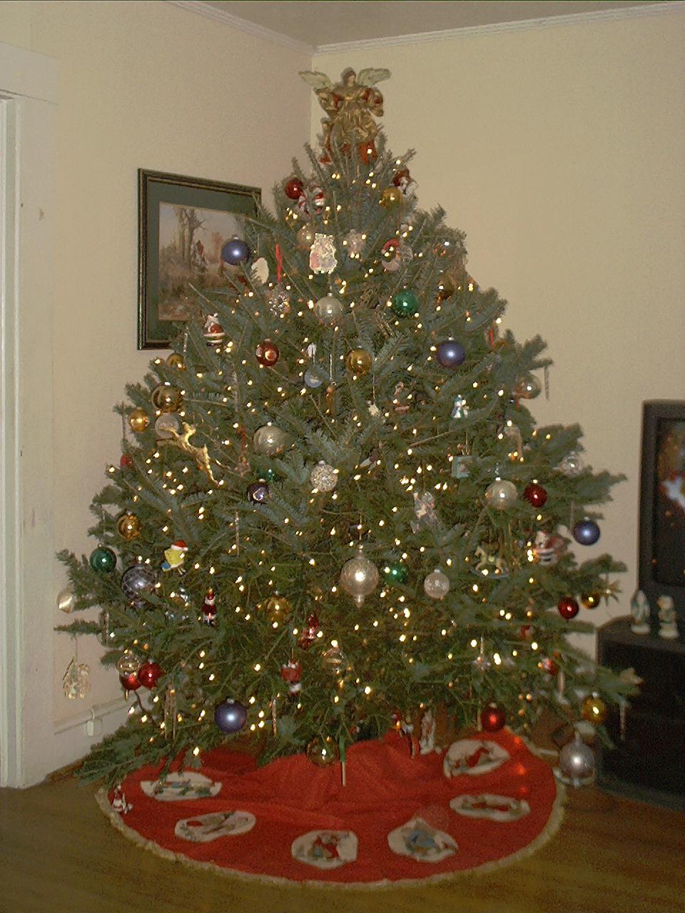 fresh cut christmas trees toronto