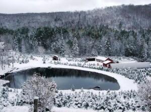 2ND OCT SNOW
