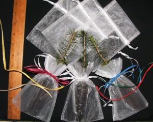 Seedling favors in organza bags